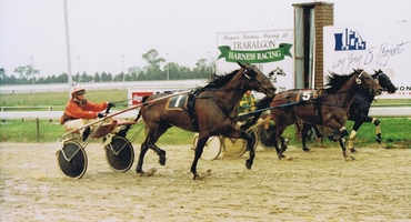 Top trots card at Warragul on Monday